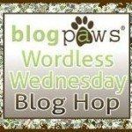 BlogPawsWedButton