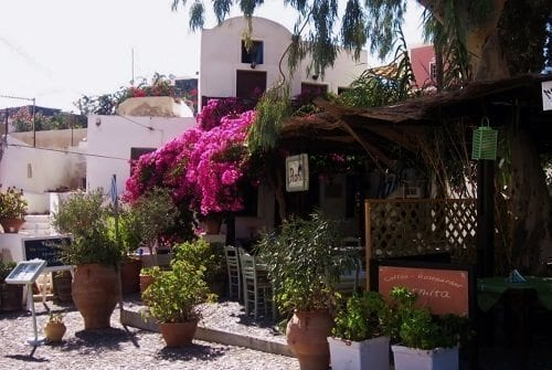 Town of Megalochori.  These beautiful bougainvillea are found all over Greece. ©DDB