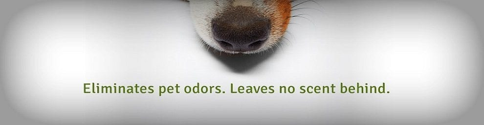 Helios Pet Odor and Stain Remover
